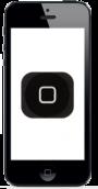 Byte av Hemknapp Iphone 5 (liten bild)